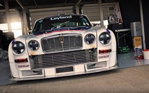 Picture white, Jaguar, Jaguar, white, front, front, race, XJ12C