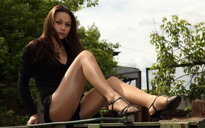 Picture LOOK, NATURE, DRESS, STOCKINGS, BROWN hair