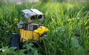 Picture flower, grass, nature, dandelion, lawn, toy, robot, toy, beautiful, spring, Wall-E, toy world