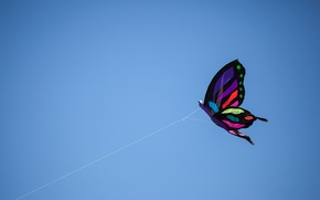 Picture the sky, line, kite