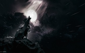 Picture the sky, rock, the moon, wolf, howl, desktopography, Starfall, Fenrir