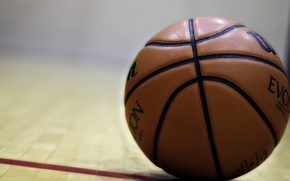 Picture sport, the ball, basketball