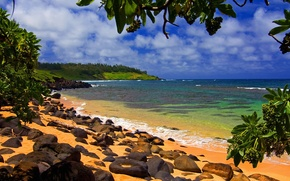 Wallpaper Hawaii, Kauai, Moloaa, Beach Shade