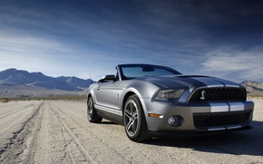 Picture mustang, convertible, ford, shelby