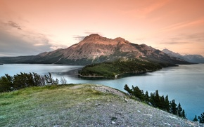 Picture forest, lake, mountain, canada, national Park, alberta, waterton lakes national park