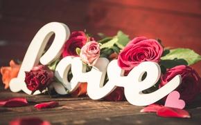 Picture love, heart, love, heart, romantic, petals, roses