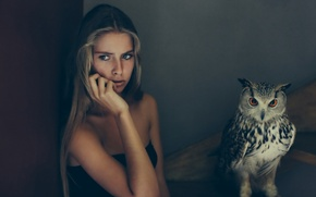 Picture girl, background, owl