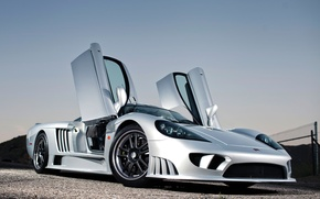 Picture door, Saleen, supercar, the front, front