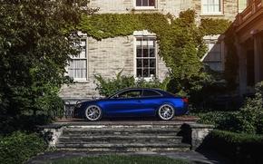 Picture Audi, Audi, profile, blue, Blue