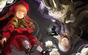 Picture light, sleep, white roses, Suigintou, Rozen Maiden, Shinku