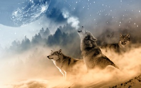 Picture landscape, the moon, winter, three, howl, wolf