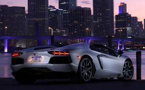 Picture the sky, light, bridge, the city, lights, car, roadster, back, LP700-4, Lamborghini Aventador