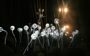 Picture lamp, dandelions, landscape design