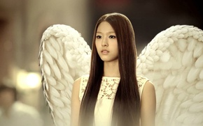Picture angel, feathers, Asian, long hair, k-pop, Elvis, Korean, white wings, AOA, video clip