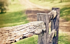 Picture macro, style, the fence