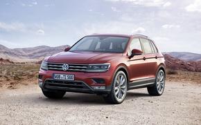 Picture Volkswagen, Volkswagen, Tiguan, 2015, Tiguan