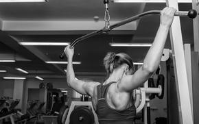Picture bodybuilder, gym, workout, back