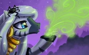 Picture spider, author, Halloween, pony, My little pony, KP-ShadowSquirrel, Zecora, powder