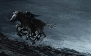 Picture night, horse, mystic