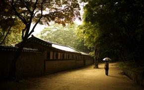 Wallpaper girl, wall, umbrella, solace, Seoul, the Palace of prospering virtue, changdeok Palace, changdeokgung, Korea