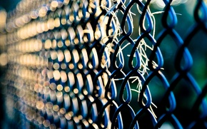 Picture macro, background, mesh, widescreen, Wallpaper, the fence, the fence, wallpaper, widescreen, background, full screen, HD …