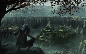 Picture jungle, temple, thief