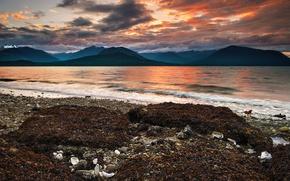 Picture sea, beach, algae, sunset, mountains, pebbles