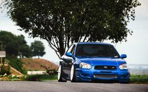 Picture Subaru, STI, blue, impreza, front, Subaru, Impreza