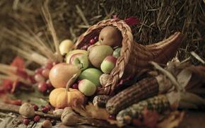 Picture autumn, leaves, berries, basket, apples, corn, harvest, pumpkin, nuts, vegetables, pear, autumn, leaves, nuts, pears, …