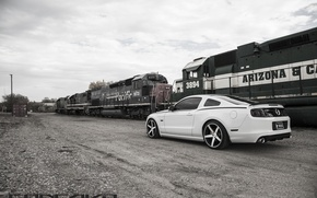 Picture machine, auto, train, Mustang, Ford, drives, auto, Black, Matte, Face, Wheels, Concave, Machined, CW-5