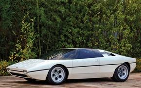 Picture Lamborghini, Car, Sports, White