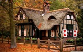 Wallpaper house, beautiful, nature