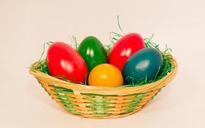 Wallpaper Easter, eggs, paint, basket, grass, spring