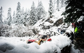 Wallpaper Winter, Snow, Forest, Sport, Machine, People, Tree, Citroen, DS3, WRC, Rally, Rally, Total