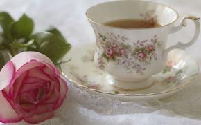 Picture flower, tea, rose, petals, Bud, Cup, still life, saucer