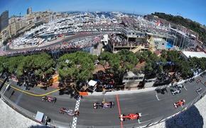 Picture Start, Monaco F1, GP MONACO