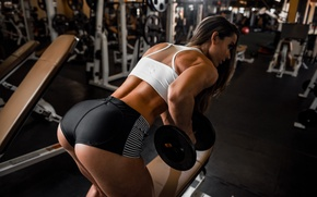 Picture pose, hair, figure, Valentina, Fitness, the gym, exercise, dumbbell