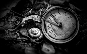 Picture watch, black and white, Time is now
