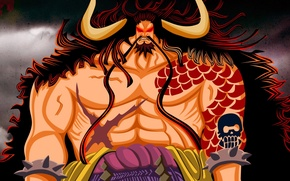 Picture fire, sake, flame, game, One Piece, horns, long hair, pirate, anime, red eyes, man, tatoo, …