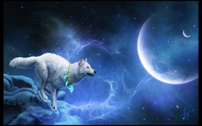 Picture white, planet, wolf, stars, mystic