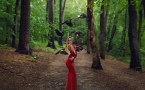 Picture girl, trees, birds, figure, dress, in red, Spring