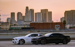Picture ford, mustang, Mustang, camaro ss, white, Chevrolet, black, side view, shadow, Ford, chevrolet, Camaro