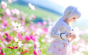 Picture summer, flowers, mood, doll, kosmeya