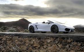 Picture Lamborghini, Gallardo, convertible, LP 560-4 Spyder
