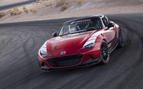 Picture Mazda, Global, MX-5, 2016, Cup Racecar