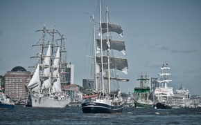 Picture river, ships, Germany, Elba, parade, Hamburg, Germany, sailboats, Hamburg, Elbe River