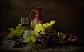 Picture wine, grapes, pitcher, still life