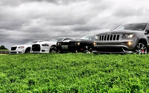 Picture auto, the sky, grass, krastaa, jeep grand cherokee, dodge challenger str8, chrysler 300 srt8, dodge …