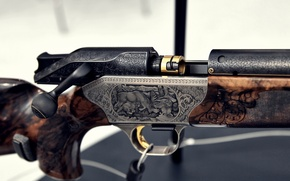 Picture macro, the gun, engraving, shutter, ARMS & Hunting 2012, Blaser R8 Custom Grade II, 8x68S