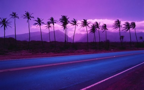 Wallpaper road, mountains, palm trees, color, 153